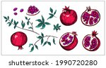 set of pomegranate fruit sketch ... | Shutterstock .eps vector #1990720280