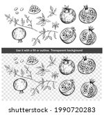 set of pomegranate fruit sketch ... | Shutterstock .eps vector #1990720283