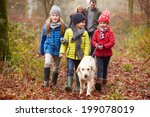 Stock photo family walking dog through winter woodland 199078019