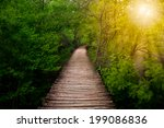 deep forest pathway in the... | Shutterstock . vector #199086836