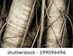 old wood texture background...   Shutterstock . vector #199096496