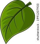 cartoon green leaf fresh...   Shutterstock .eps vector #1991207933