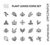 leaves of useful plants vector...   Shutterstock .eps vector #1991296919