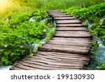 beautiful fresh greenery with... | Shutterstock . vector #199130930