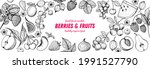 berries and fruits drawing... | Shutterstock .eps vector #1991527790