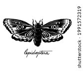 Moth Black And White Ink...