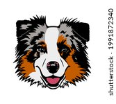 australian shepherd dog. vector ...   Shutterstock .eps vector #1991872340