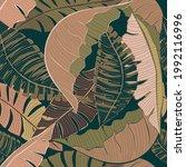 banana leaves seamless pattern...   Shutterstock .eps vector #1992116996