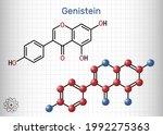 genistein molecule. it is... | Shutterstock .eps vector #1992275363