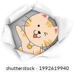 cat lover vector illustration... | Shutterstock .eps vector #1992619940