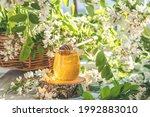 Sweet Honey Jar Surrounded...
