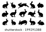 Rabbit Silhouettes On The Whit...