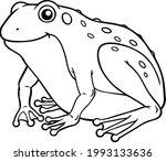 cartoon vector smiling frog...   Shutterstock .eps vector #1993133636