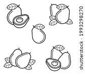 avocado set. collection icons... | Shutterstock .eps vector #1993298270