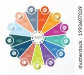 basic circle infographic...   Shutterstock .eps vector #1993607039