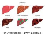 liver disease logo. healthy... | Shutterstock .eps vector #1994135816