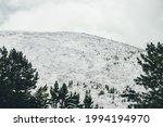 Minimalist Winter Landscape...