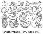 Fruits And Berries Outline...