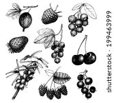 vector set of ink  hand drawn... | Shutterstock .eps vector #199463999