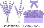 lavender flowers vector...   Shutterstock .eps vector #1995304643