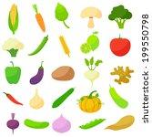 vector illustration of... | Shutterstock .eps vector #199550798