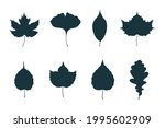 big collection of maple  oak ... | Shutterstock .eps vector #1995602909