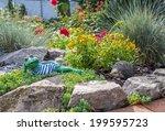 Garden Frog And Hedgehog Lying...
