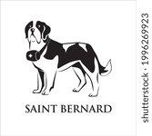 saint bernard dog. isolated... | Shutterstock .eps vector #1996269923
