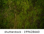 moss background | Shutterstock . vector #199628660