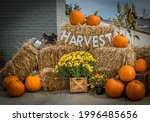 Autumn Display Outdoors At The...