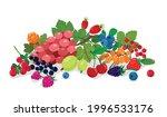 juicy fresh wild and garden...   Shutterstock .eps vector #1996533176