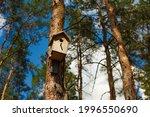 Wooden Birdhouse Hang On Pine...