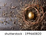 Golden Egg In Nest On Dark...