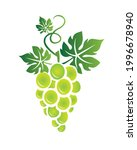 green grape with leaves... | Shutterstock .eps vector #1996678940