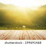 Постер, плакат: Green tea plantation with