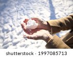 Women's Hands In Winter Without ...