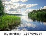 Forest Lake In Sweden On A...