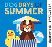 dog days of summer time for... | Shutterstock .eps vector #1997125589