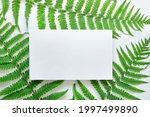 mockup template with horizontal ...   Shutterstock . vector #1997499890