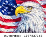 Bald Eagle. Bird And American...