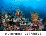 multitudes of small  colorful... | Shutterstock . vector #199758518