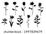 vector silhouettes of garden... | Shutterstock .eps vector #1997839679