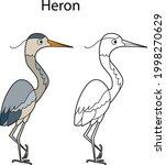 funny cute bird heron isolated...   Shutterstock .eps vector #1998270629