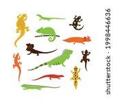 set of different wild color...   Shutterstock .eps vector #1998446636
