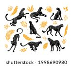 cheetahs silhouettes collection.... | Shutterstock .eps vector #1998690980