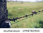 The Fence Of The Auschwitz...