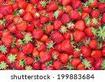 Fresh Juicy Strawberries  ...