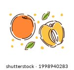 a whole juicy peach and half  a ...   Shutterstock .eps vector #1998940283