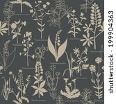 pattern with medicinal plants | Shutterstock .eps vector #199904363