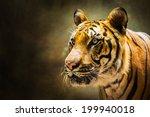 tiger | Shutterstock . vector #199940018